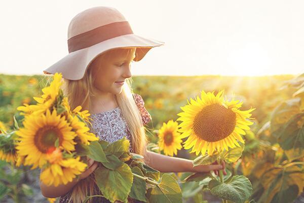 向日葵一般送什么人,送给最亲近的人(长辈、领导、朋友)